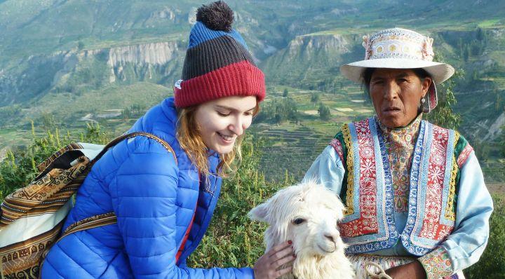 queridas alpacas obrigada por existirem4
