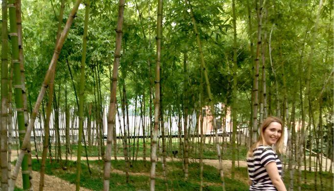 parque-de-los-pies-descalzos-jardim-de-bambu-em-medellin-colombia