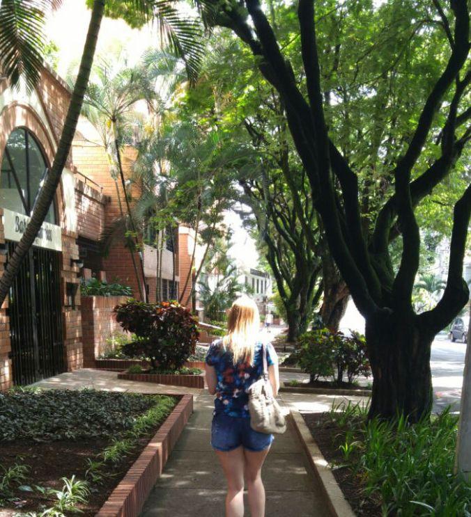 ruas-arborizadas-de-laureles-medellin