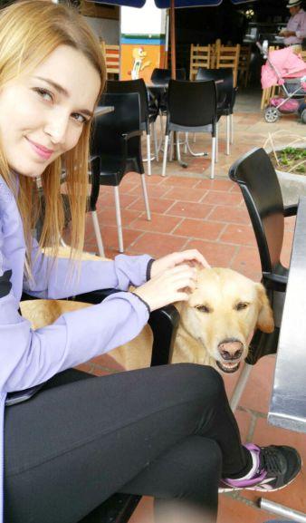 cachorros-realmente-adoraveis-em-guatape-aaah