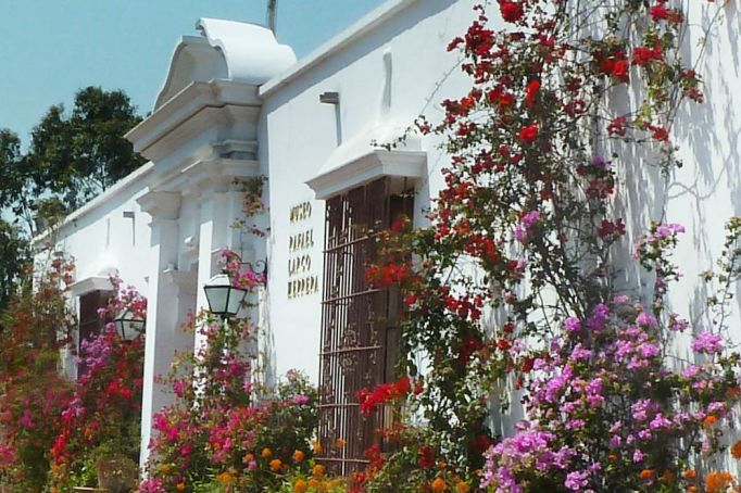 flores-no-museo-larco-lindo-de-viver
