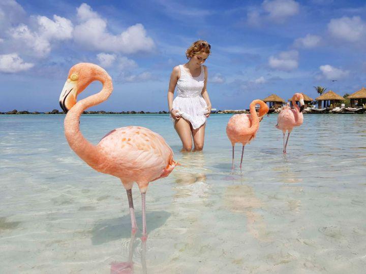 aruba melhores praias flamingo beach dicas 2