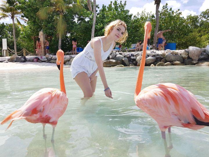 flamingo beach renaissance island dicas 2