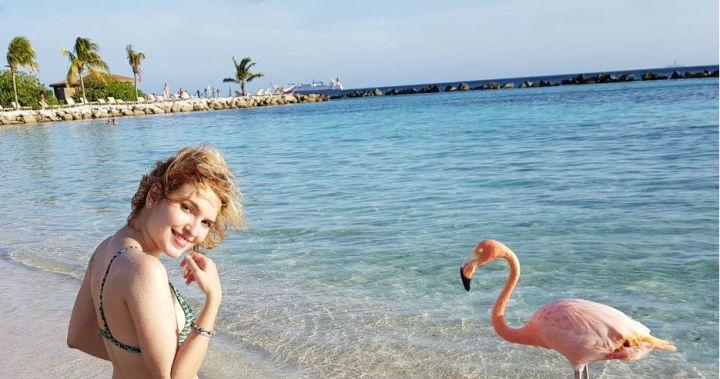 flamingo beach renaissance island do renaissance casino e resort dicas de aruba