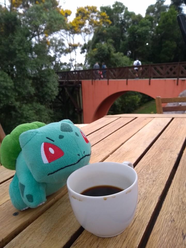 bulbassauro tomando cafe em curitiba no carnaval.jpg