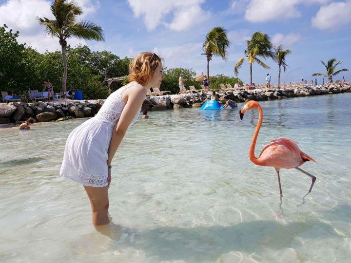 renaissance island e flamingo beach como ir e quanto custa.jpg