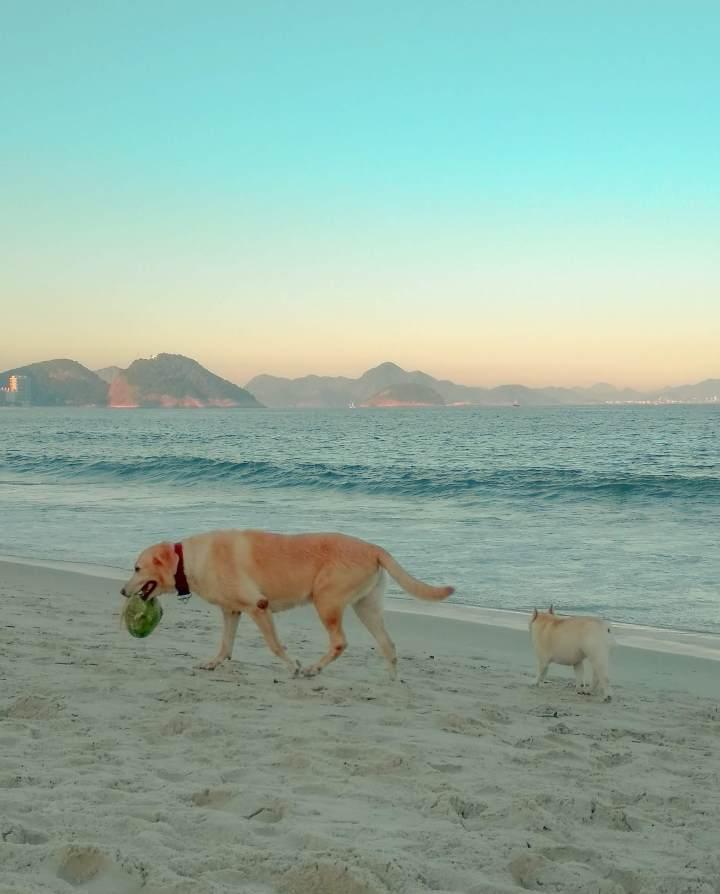 o-que-fazer-em-copacabana-e-por-que-se-hospedar-no-bairro1.jpg