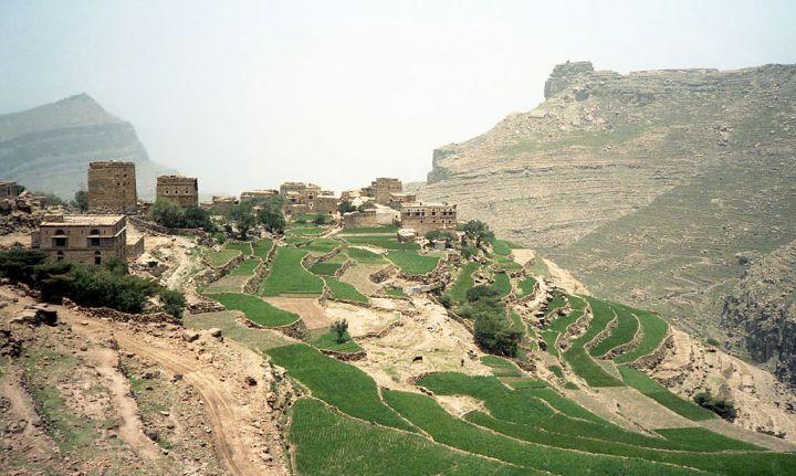 conflito no iemen